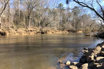 https://cf.ltkcdn.net/camping/images/slide/276843-850x567-william-b-umstead-state-park.jpg