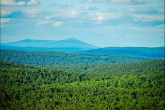 Ouachita National Forest, AR