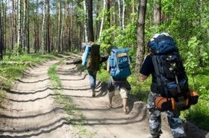 Backpackers on the trail.
