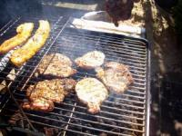 Outdoor Grill Cooking Recipes