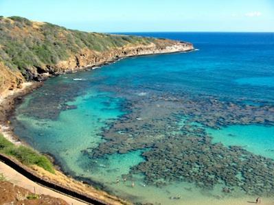 Oahu Honolulu Coral Coves