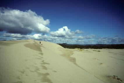 Clouds Over Oregon Dunes