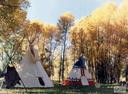 Two tipis in field under trees