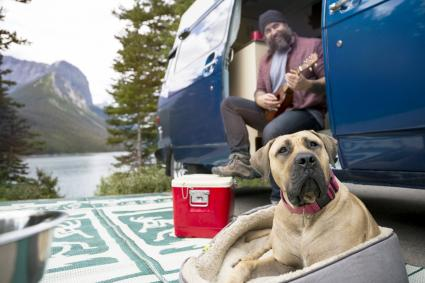 Man playing guitar at camper van near dog at remote lakeside