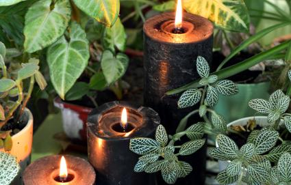 Black candles and herbs