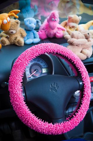 Girl Car Accessory Ideas