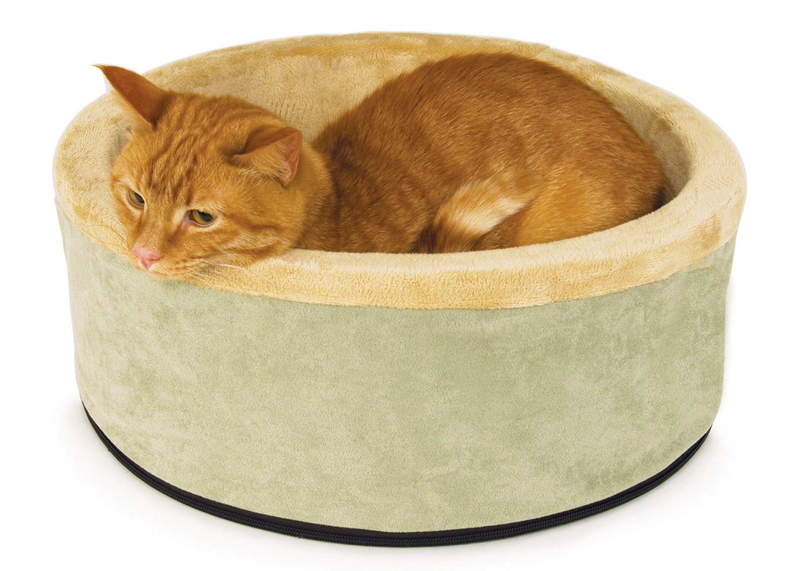 Guide To Buying Heated Cat Beds Lovetoknow