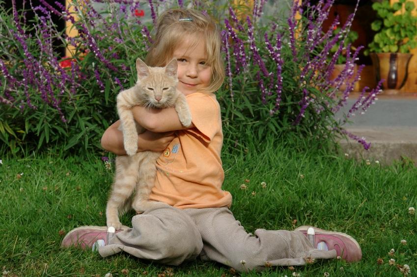 child_with_cat.jpg
