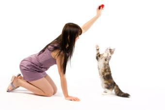 girl training her cat