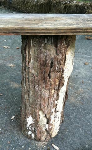base of cat tree
