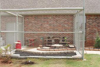 Different Types of Cat Enclosures