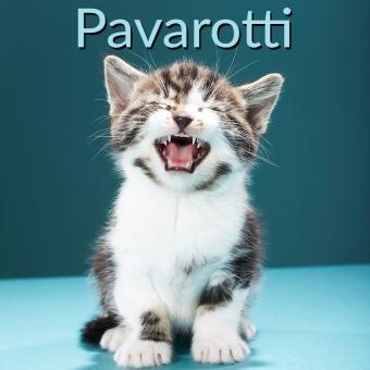 https://cf.ltkcdn.net/cats/images/slide/188218-850x850-Pavarotti.jpg