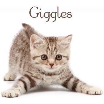 https://cf.ltkcdn.net/cats/images/slide/188220-850x850-Giggles.jpg