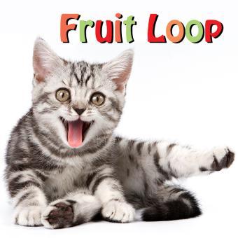 https://cf.ltkcdn.net/cats/images/slide/188225-850x850-Fruit-Loop.jpg