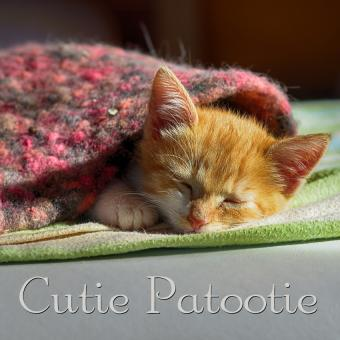 https://cf.ltkcdn.net/cats/images/slide/188227-850x850-Cutie-Patootie.jpg