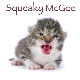 https://cf.ltkcdn.net/cats/images/slide/188230-850x850-Squeaky-McGee.jpg