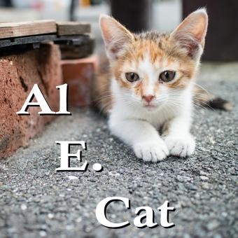 https://cf.ltkcdn.net/cats/images/slide/188232-850x850-Al-E-Cat.jpg