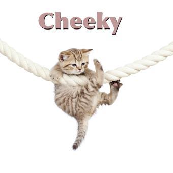 https://cf.ltkcdn.net/cats/images/slide/188236-850x850-Cheeky.jpg