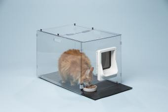 Cat Meowspace Feeder