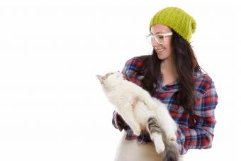 80 Nerdy Cat Names That Are Epic