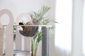 Tuft + Paw Milo Cat Tree