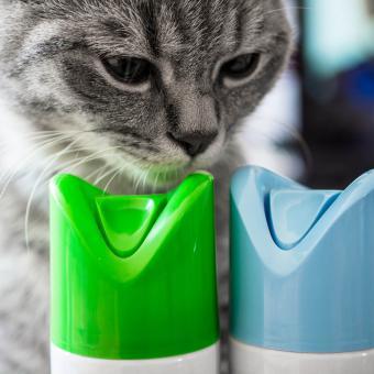https://cf.ltkcdn.net/cats/images/slide/243236-850x850-9-smells-cats-hate.jpg