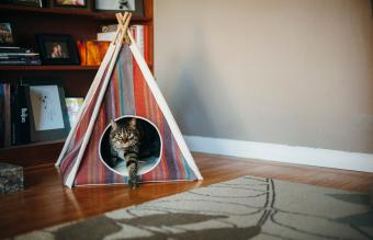 P.L.A.Y.'s Horizon Pet Teepees