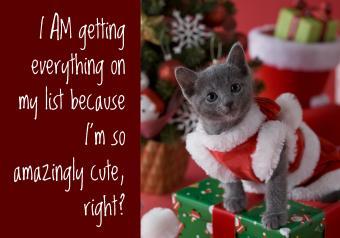 https://cf.ltkcdn.net/cats/images/slide/252091-850x595-8_kitten_costume_meme.jpg