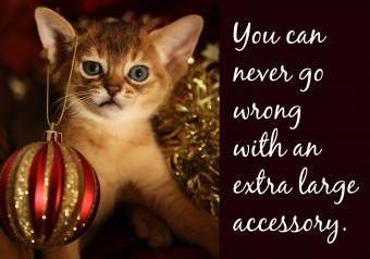 https://cf.ltkcdn.net/cats/images/slide/252093-850x595-10_kitten_ornament_meme.jpg