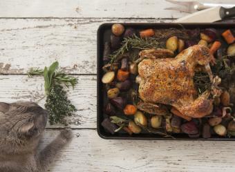 Thanksgiving Leftovers Cat Treats