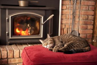 Old tabby cat soaks up the heat in front of a wood burning stove