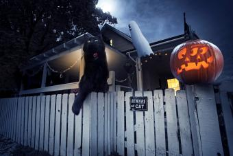 Halloween scene with a black cat perched atop a fence in front of a decorated house