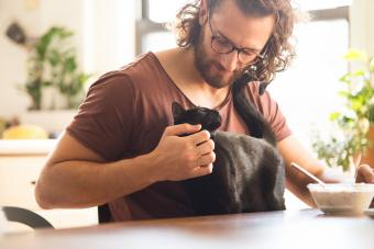 Young man stroking his black cat at home