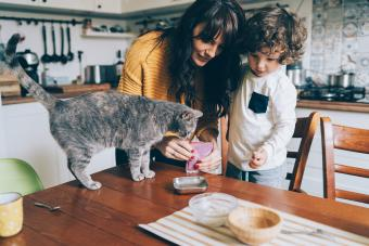 Young woman and little boy feeding their cat at the table at home
