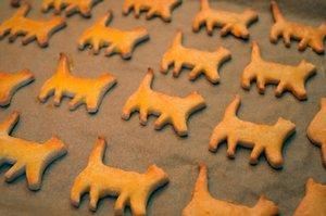 cat treats on a cookie sheet