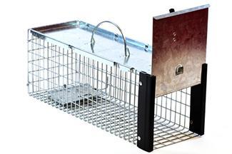 single door trap