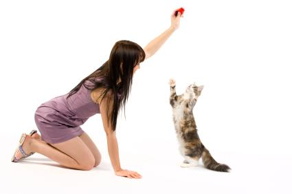girl training her cat