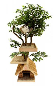 Medium Cat Tree House from CatsPlay