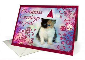 Christmas card with kitten in a santa hat at Greeting Card Universe