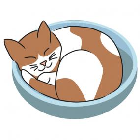 Sleeping kitty clip art