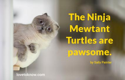Funny Cat Sayings With Meow
