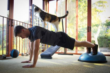Young man exercise with cat on his back