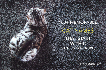 cat names with c
