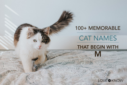 cat names with M