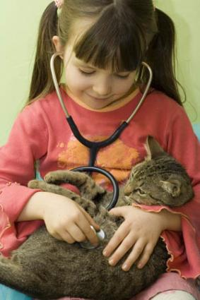 Child listening to cat's heart with a stethoscope