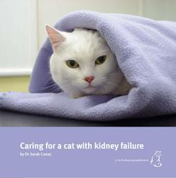 Cat care book from Dr. Caney