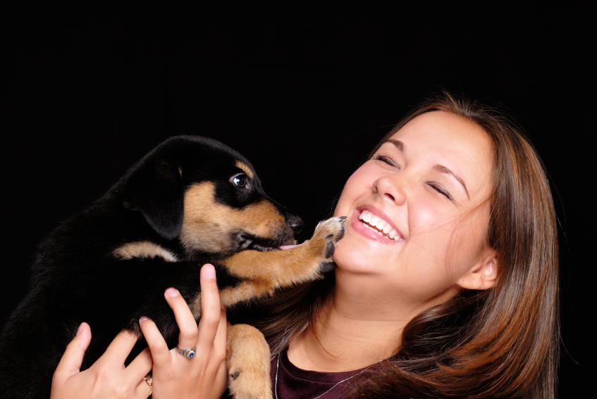 puppy-pal.jpg