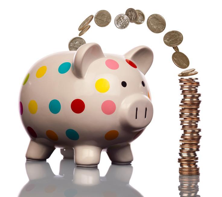 https://cf.ltkcdn.net/charity/images/slide/130187-736x652r1-Piggy-Bank.jpg