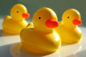 https://cf.ltkcdn.net/charity/images/slide/74650-300x200-rubber_ducks.jpg