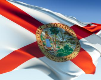 Bylaws for Nonprofit Corporations in Florida
